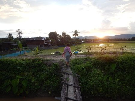 Sun goes down behind the mountains, and the rice fields are thriving.